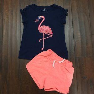 Cute Girls Flamingo Shorts & Tee Outfit Sz 5
